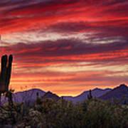 Red Hot Sonoran Sunset Art Print