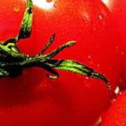 Red Hot Tomato Art Print by Karen Wiles
