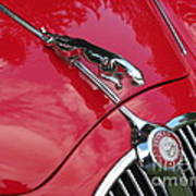 Red Jaguar 3.8 Art Print