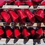 Red Kayaks Art Print
