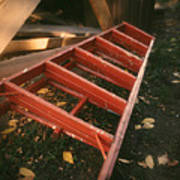 Red Ladder Art Print