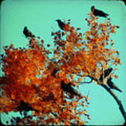 Red Leaves Among The Ravens Art Print