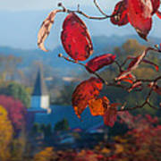 Red Leaves Blue Mountain Art Print by Dorothy Walker