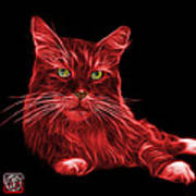 Red Maine Coon Cat - 3926 - Bb Art Print