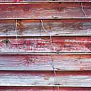 Red Mold Siding Art Print