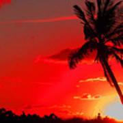 Red Palm Art Print