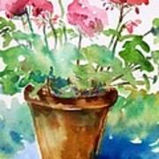 Red Pelargonium  Art Print