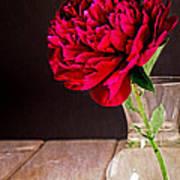 Red Peony Flower Vase Art Print by Edward Fielding