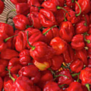 Red Peppers At The Saturday Market, San Art Print