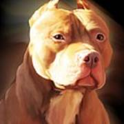 Red Pit Bull By Spano Art Print by Michael Spano