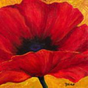 Red Poppi I Art Print