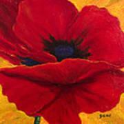 Red Poppi II Art Print