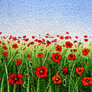 Red Poppies Green Field And A Blue Blue Sky Art Print