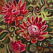 Red Proteas Art Print by Jen Norton