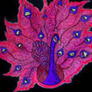Red - Purple Peacock Art Print