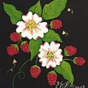 Red Raspberries And Dogwood Flowers Art Print