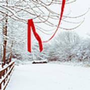 Red Ribbon In Tree Print by Amanda Elwell