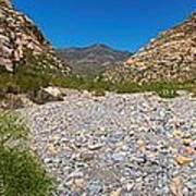 Red Rock Canyon V Art Print