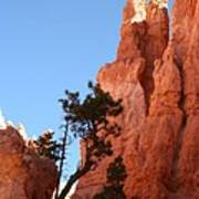 Red Rocks Of Bryce Canyon  Art Print