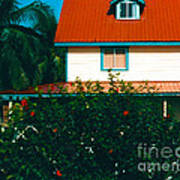 Red Roof Home Art Print