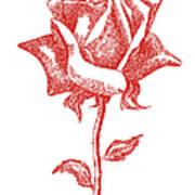 Red Rose Art 1 Art Print