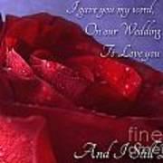 Red Rose Romantic Greeting Card Art Print