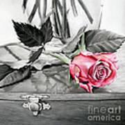 Red Rosebud Art Print