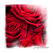 Red Roses. Elegant Knickknacks Art Print