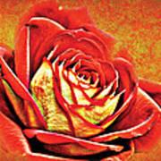 Red Rosey Art Print
