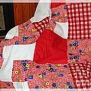 Red White And Gingham With Flowery Blocks Patchwork Quilt Art Print