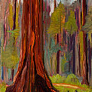 Redwood Giant Art Print