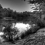Reedy Creek Park Art Print