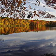 Reflected Autumn Colors Art Print