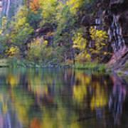 Reflected Fall Art Print