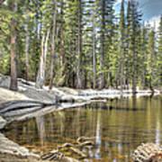 reflecting pond 2 Carson Spur Art Print