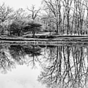 Reflection In Black And White Art Print