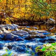 Reflection Of Autumns Natural Beauty Art Print
