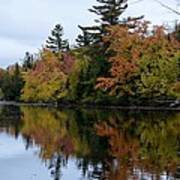 Reflection On The Raquette River Art Print