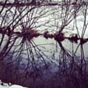 #reflection #water #river #bush #pretty Art Print