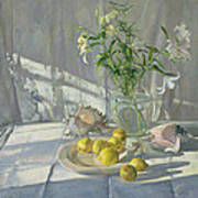 Reflections And Shadows  Art Print by Timothy  Easton