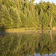Reflections - Canisbay Lake - Detail Art Print