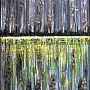Reflections IIi Art Print by Dan Earle