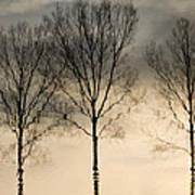 Reflections In Grey II Art Print