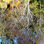 Reflections Of Fall 5 Art Print