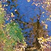 Reflections Of Fall Print by Feva  Fotos