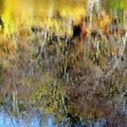 Reflections Of Fall1 Art Print