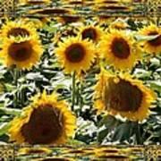 Reflections Of Sunflowers Art Print