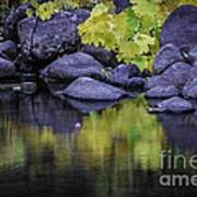 Reflections Of Yellow And Green Art Print