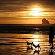 Reflections-peace At Sunset Art Print