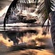 Reflections Through The Palm Art Print